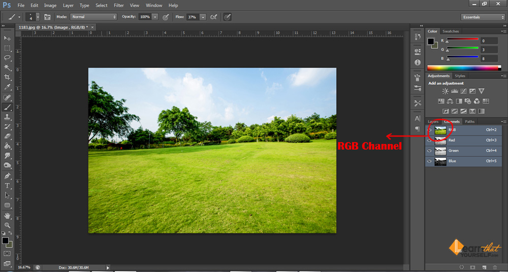 Photoshop channels explained by Lalit Adhikari at Learn That Yourself image 2